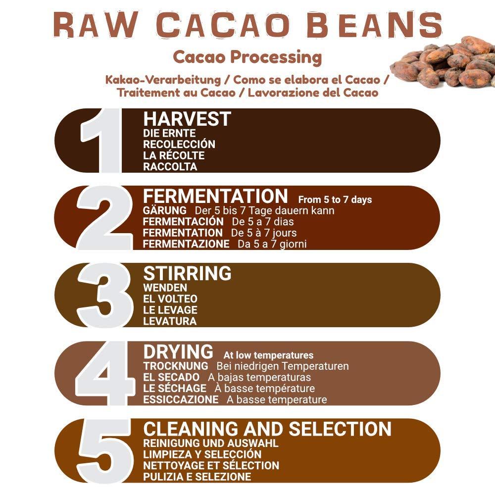 Granos de Cacao Crudo Ecológico 200g | 100% Bio, Natural y Puro | Cultivado en Perú a partir de la planta Theobroma cacao | Superalimento rico en ...