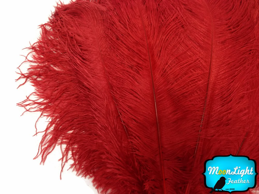 1/2 lb - 17-19'' RED Ostrich Large Drab Wholesale Feathers (bulk) by Moonlight Feather
