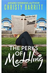The Perks of Meddling (The Sidekick's Survival Guide Book 2) Kindle Edition