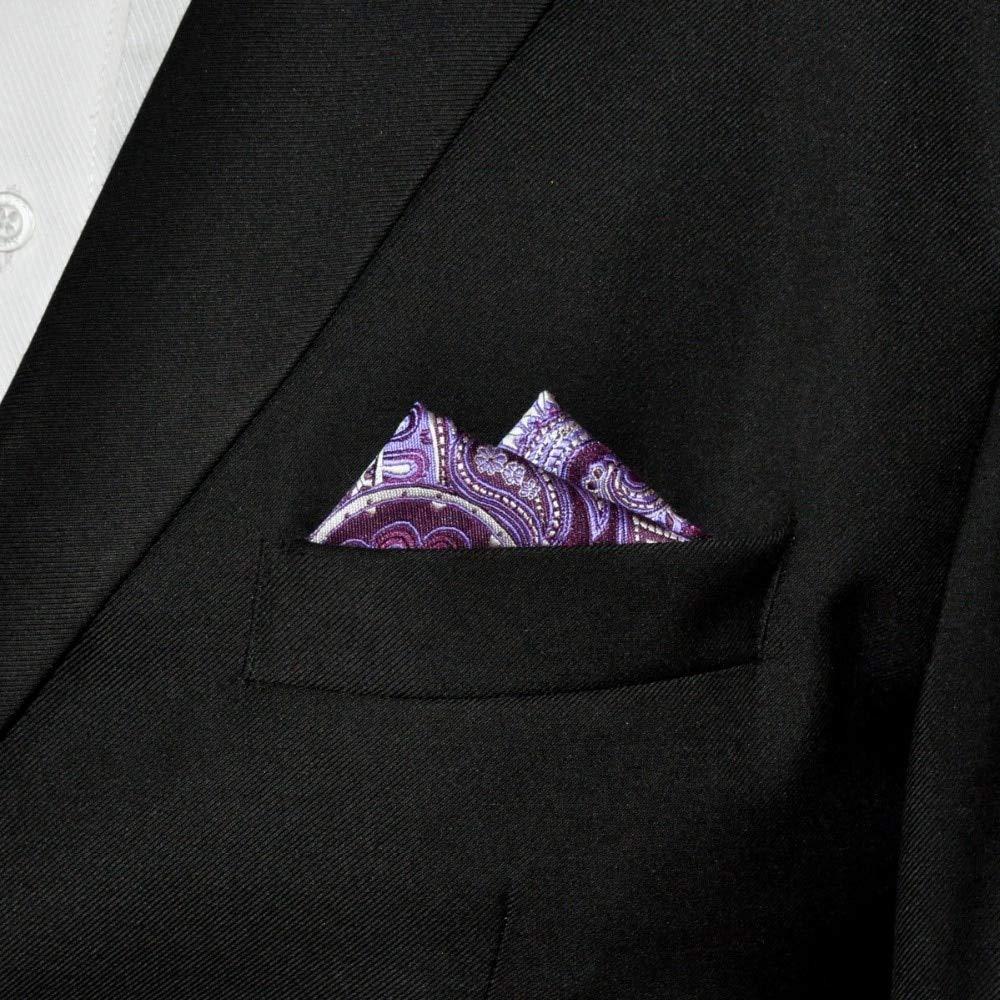 SHLAX/&WING Mens Pocket Square Purple Paisley Handkerchieves Silk Hanky