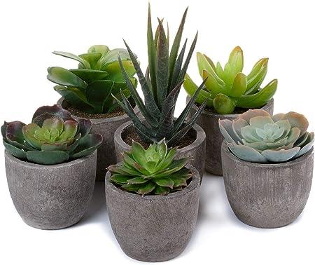 La planta está hecha de plástico, fácil de cuidar.,La olla está hecha de pulpa de papel, por favor n