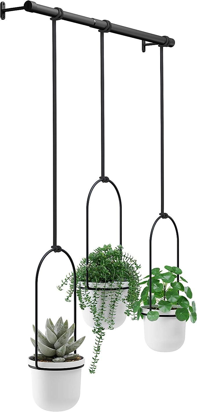 27cm-Plant Pot-Flower Pot 3 Piece Flowers Traffic Lights Hanging Light with Hanger-Blackberry
