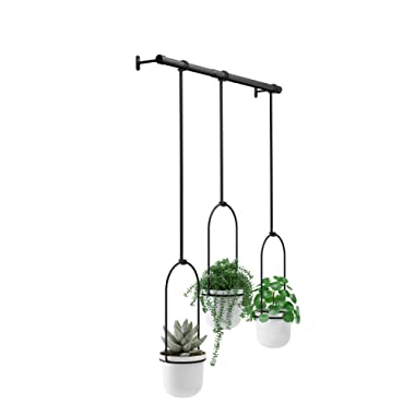 Umbra, White/Black Triflora Hanging Planter for Window, Indoor Herb Garden