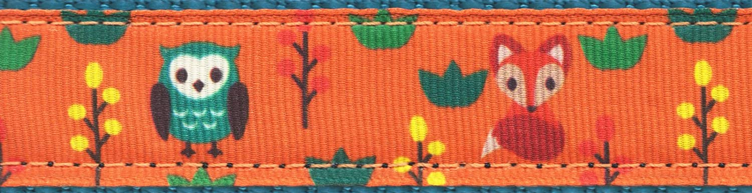 5 Yards Country Brook Design® 3//4 Inch Foxy Friends on Teal Nylon Webbing