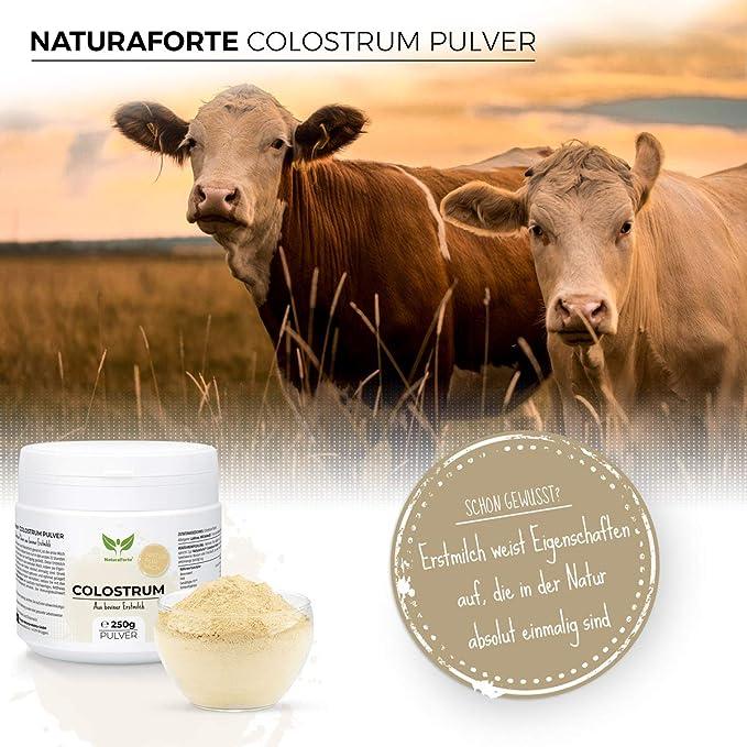 NaturaForte Calostro en Polvo 250g - Calostro natural de vaca en polvo, calostro en polvo, primera leche desgrasada suavemente, leche en polvo de ...