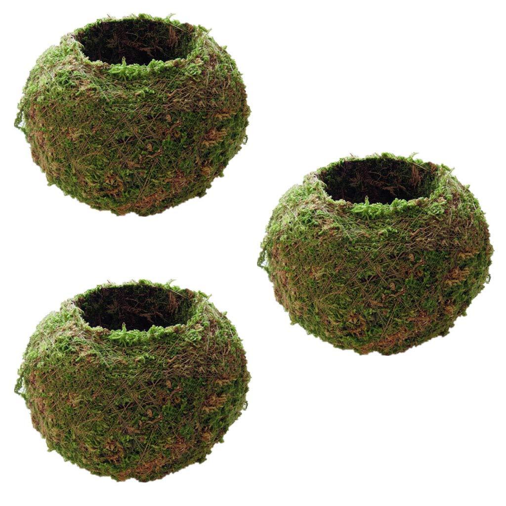 3 Piezas Creativa de Bola de Musgo del Tenedor de Bons/áis de Maceta para Plantas Suculentas 12cm