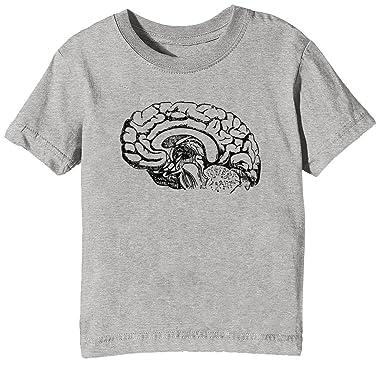 Erido Anatomie Gehirn Kinder Unisex Jungen Mädchen T-Shirt Rundhals ...