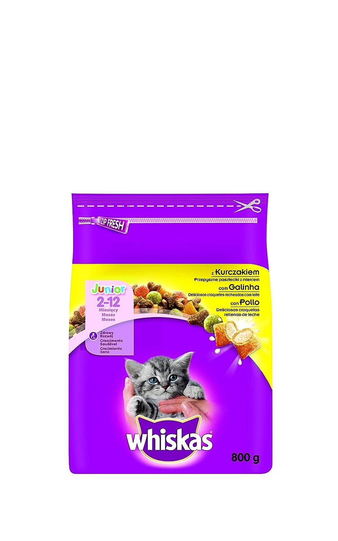 Pienso para gatos junior con sabor pollo de 800g | [Pack de 5]