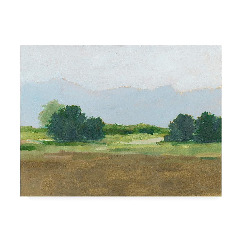 14x19 Trademark Fine Art WAG15709C1419GG Viridian Shade II by Ethan Harper, 14x19
