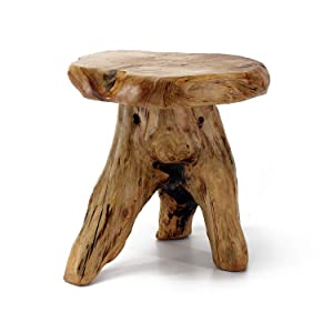 "WELLAND Tree Stump Stool Live Edge, Natural Edge Side Table, Plant Stand, Nightstand, Mushroom Stool 14"" Tall"