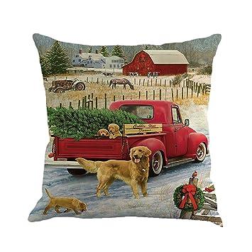 Amazon.com: iLH Fundas de almohada, varios diseños de ...