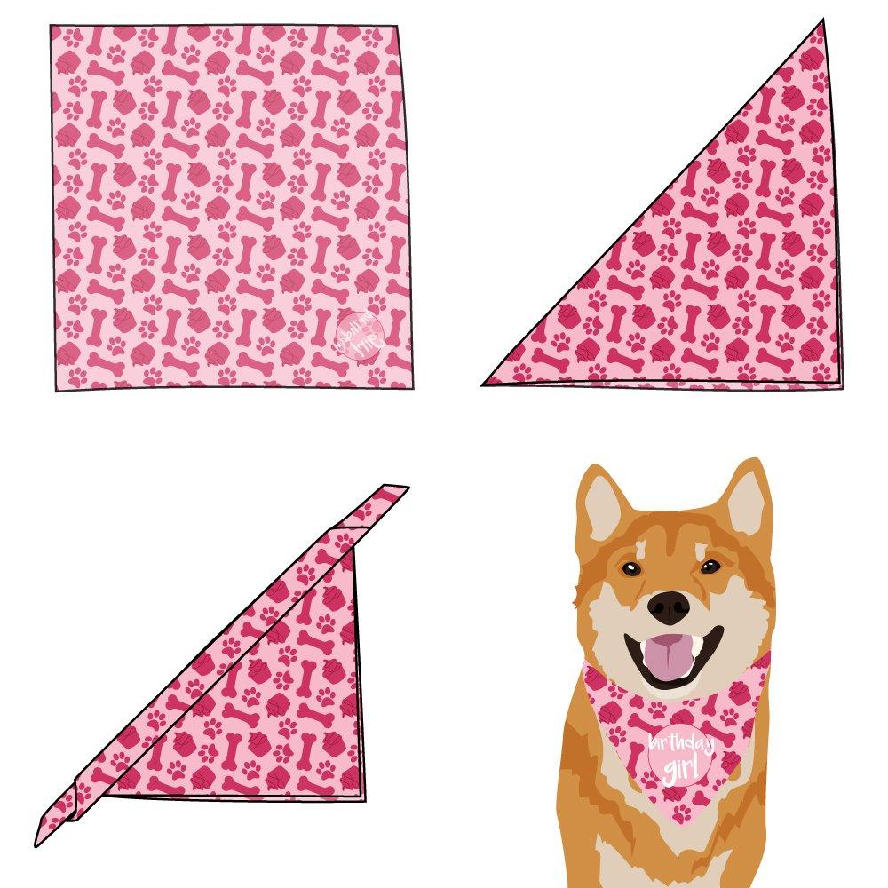 100/% Cotton Tail Trends Happy Birthday Dog Bandana Its My Birthday Leopard Print Design Fits Medium to Large Sized Dogs