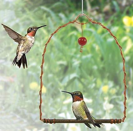 Amazon Com Songbird Essentials Sehhhums Copper Hummingbird Swing Set Of 1 Wild Bird Feeders Garden Outdoor