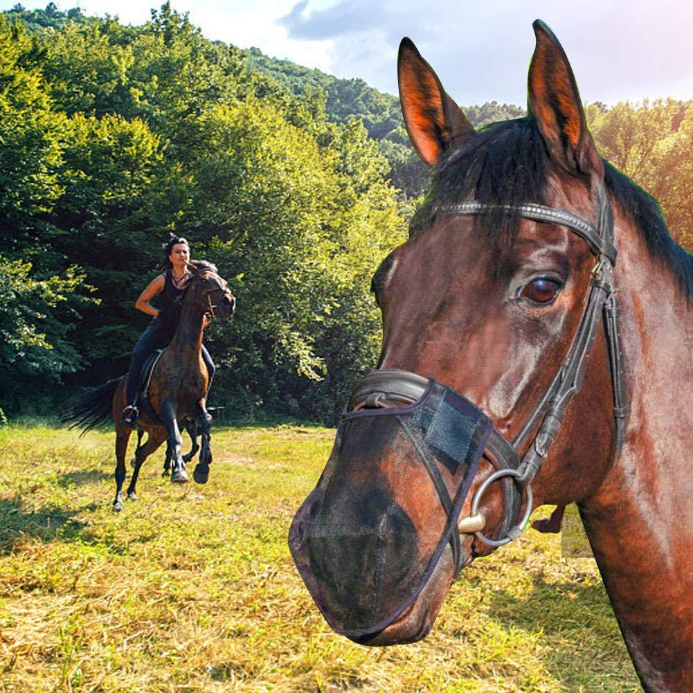 disagio del cavallo hoof boots pictures
