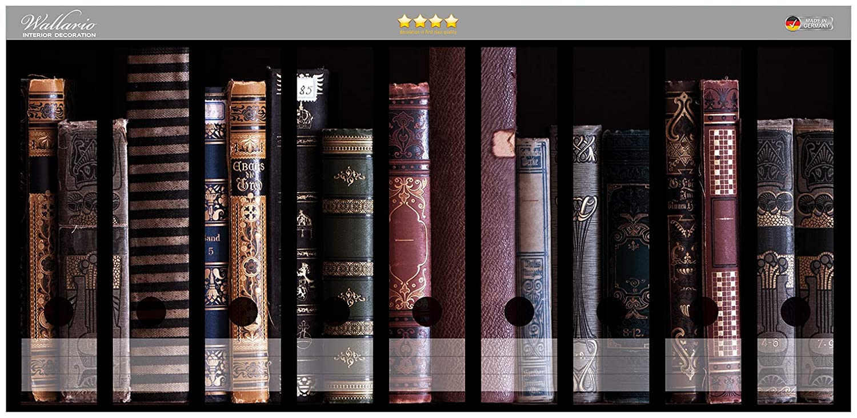 Archivadores diseño de estantería con libros antiguos en CALIDAD - Talla 54 x 30 cm, compatible con 9 archivadores: Amazon.es: Juguetes y juegos