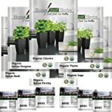 100% USDA Organic Non GMO Herb Seeds, Product of USA, Instructions Included. HOME CHEF HERBS - Ideal For Indoor and Outdoor Growing - No Gardening Experience Required - Start Now