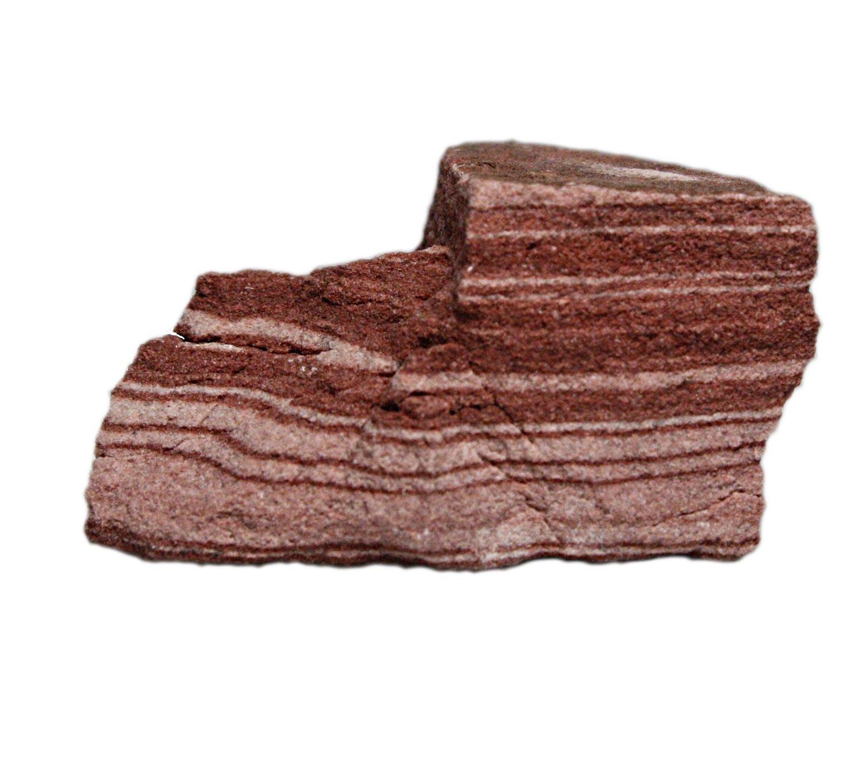 10 Unpolished Rock Specimens w//Banding Sandstone Sedimentary Rock