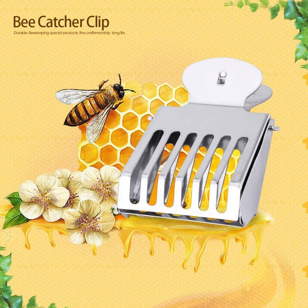 5Pcs Queen Bee Cage Catcher Clips Acciaio inossidabile Queen Bee Catching Tool Attrezzatura per apicoltura