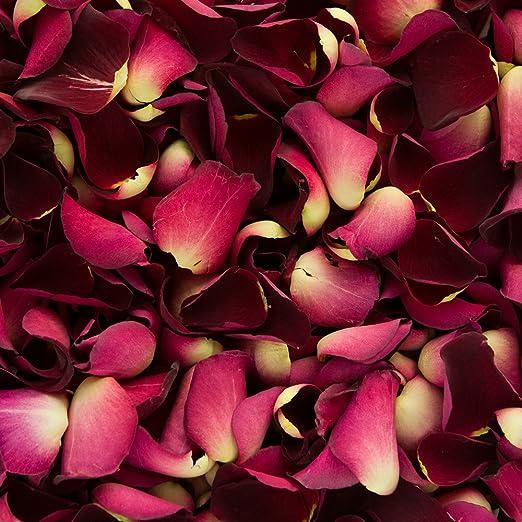 Confeti de pétalos de rosa biodegradable para bodas (Rojo Rubí, 2 ...