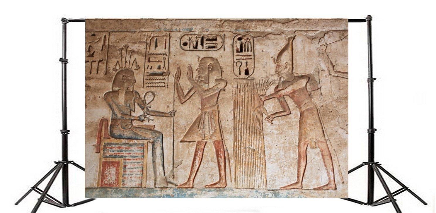 YongFoto 2,2x1,5m Fondos Fotograficos Tallas Jerogl/íficas Antiguo Templo Egipcio Egipto Fara/ón Fondos para Fotografia Fiesta Ni/ños Boby Boda Adulto Retrato Personal Estudio Fotogr/áfico Accesorios