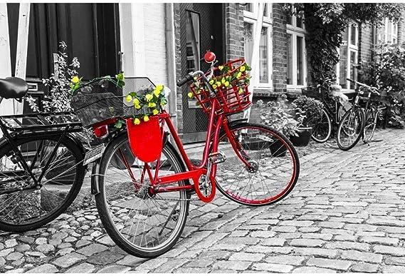 MTAMMD Puzzles Puzzle 500 1000 Piezas Bicicleta Roja Rompecabezas para Adultos Bicicleta Roja Rompecabezas con Flores En La Calle En Blanco Y Negro-1000Pieces: Amazon.es: Deportes y aire libre