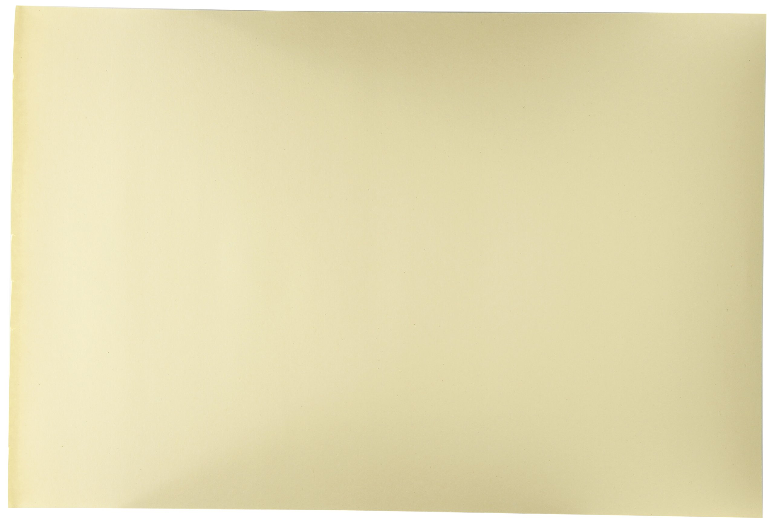 Sax Manila Drawing Paper, 40 Lb., 12 x 18 Inches, Pack of 500 by Sax