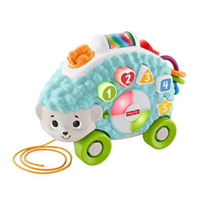 Fisher-Price Linkimals Happy Shapes Hedgehog - Interactive Educational Toy with Music and Lights for Baby Ages 9 Months & Up, Multi Color: Toys & Games
