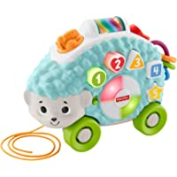 Fisher-Price Linkimals Happy Shapes Hedgehog - Interactive Educational Toy with Music and Lights for Baby Ages 9 Months & Up