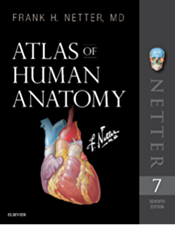 Netters clinical anatomy e book netter basic science kindle atlas of human anatomy e book netter basic science fandeluxe Image collections