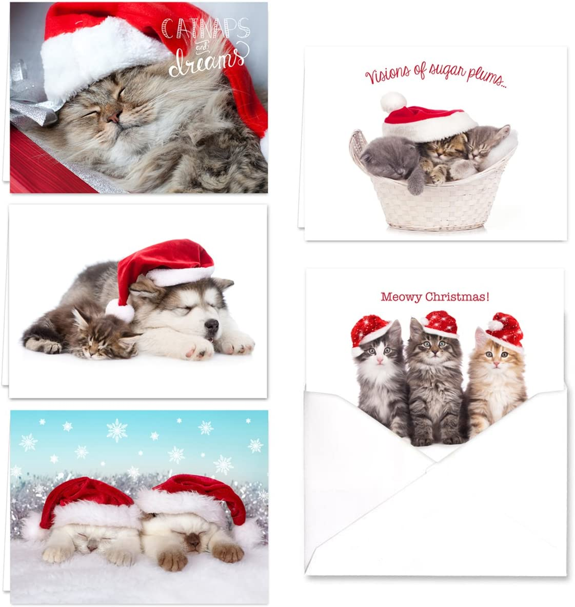 Christmas Cats Holiday Card Assortment Pack , Set of 25 cards , 5 of each  design, versed inside with envelopes