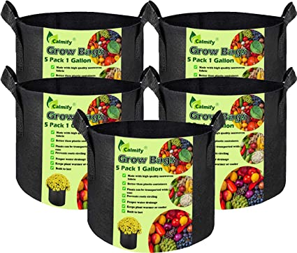 Grow Bags 5 Gallon 6-Pack Heavy Duty Thickened 400 G Fabric Pots for Planting Vegetables Fruit Flower Potato Breathable Plant Pots Containers with Reinforced Handles