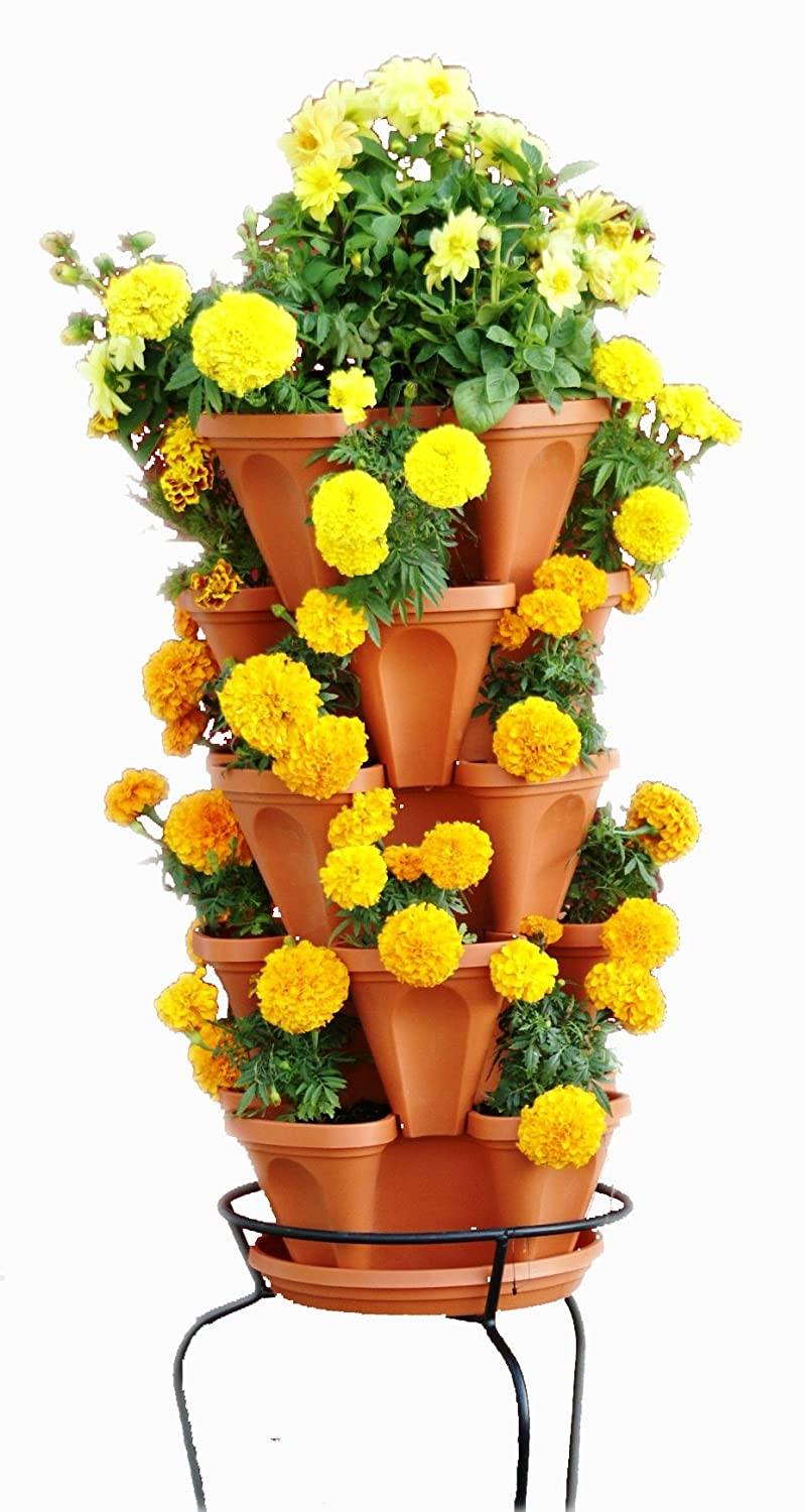 Amazon Com 5 Tier Stackable Strawberry Herb Flower And