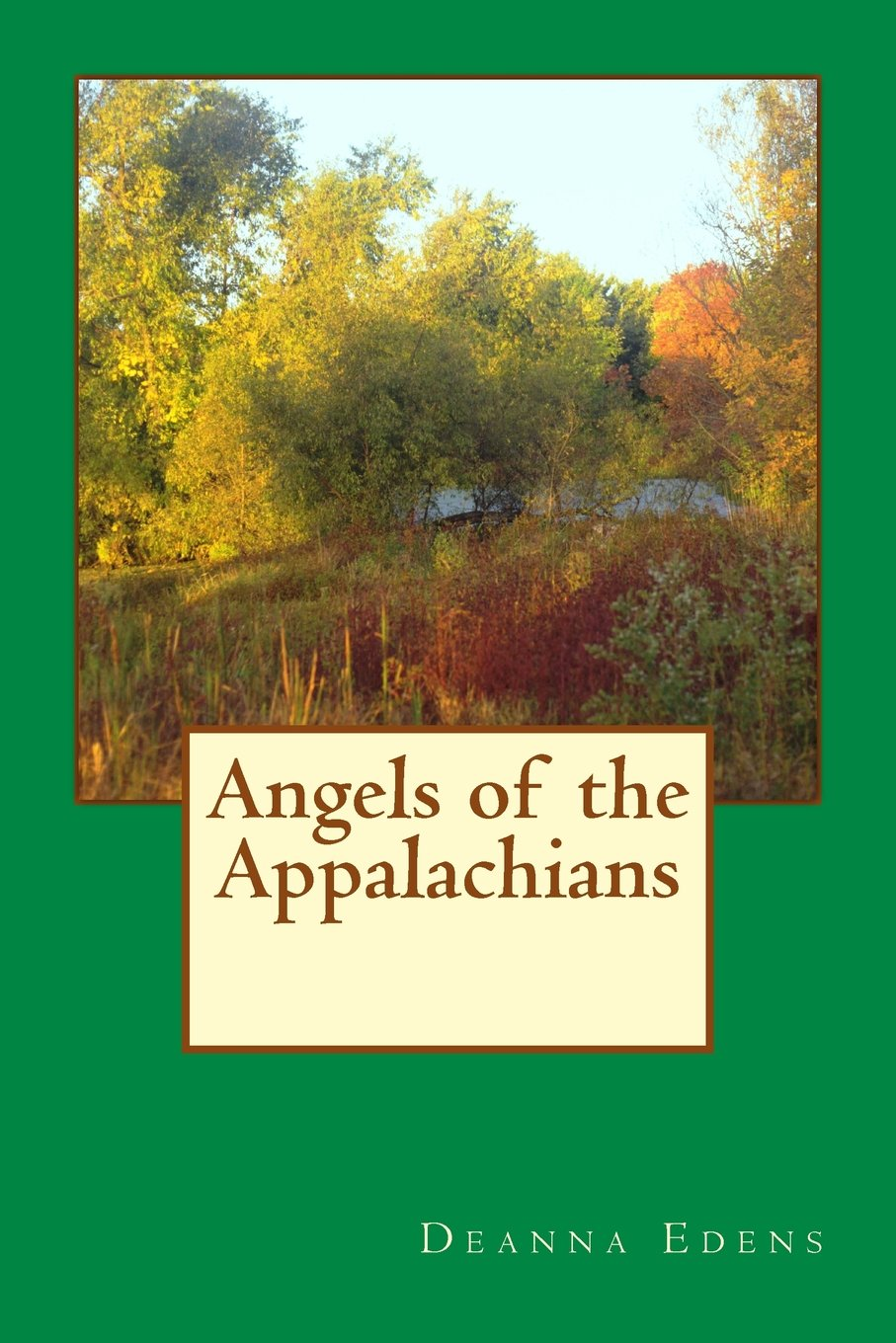 Download Angels of the Appalachians (Volume 1) PDF