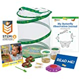 Insect Lore Butterfly Garden: Original Habitat and Two Live Cups of Caterpillars with STEM Butterfly Journal – Life Science & STEM Education – Butterfly Kit
