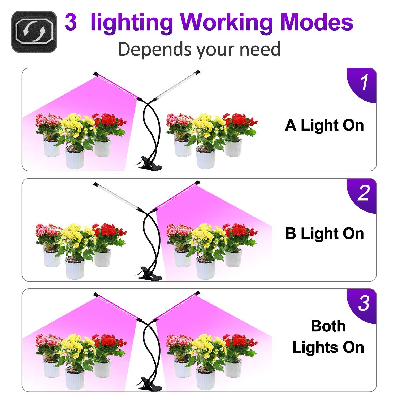 9 Dimmbare Helligkeiten 18W 72LED Doppelkopf UV Wachstumslampe f/ür Bonsai Pflanzen LEBANDWIT LED Pflanzenlampe Pflanzenlicht Vollspektrum mit 3 zeitschaltuhr 3H//9H//12H 2 Lampenk/öpfe