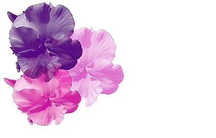 Amazon home comforts purple pink pansy background flowers home comforts purple pink pansy background flowers poster print 24 x 36 print 24 x 36 mightylinksfo