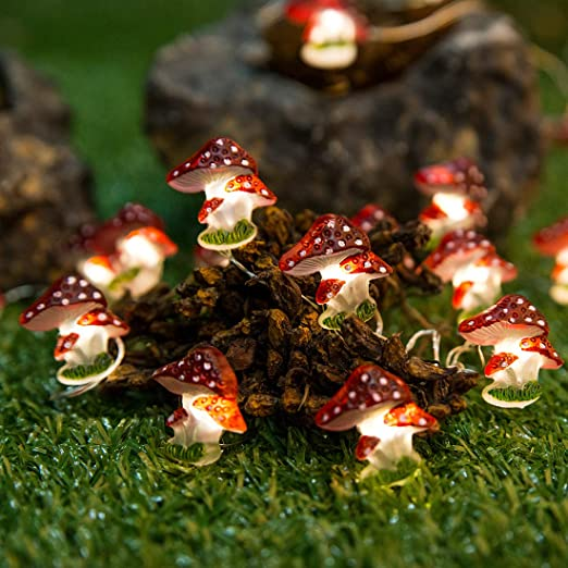 Amazon.com: Onemore Fun Mushroom String Lights, 10FT 30LEDs Christmas Decorations Battery Powered, Princess Lights for Home Girls Bedroom Indoor Dorm Room Outdoor Wedding Nursery Party Patio Fence Plants Decor: Home Improvement