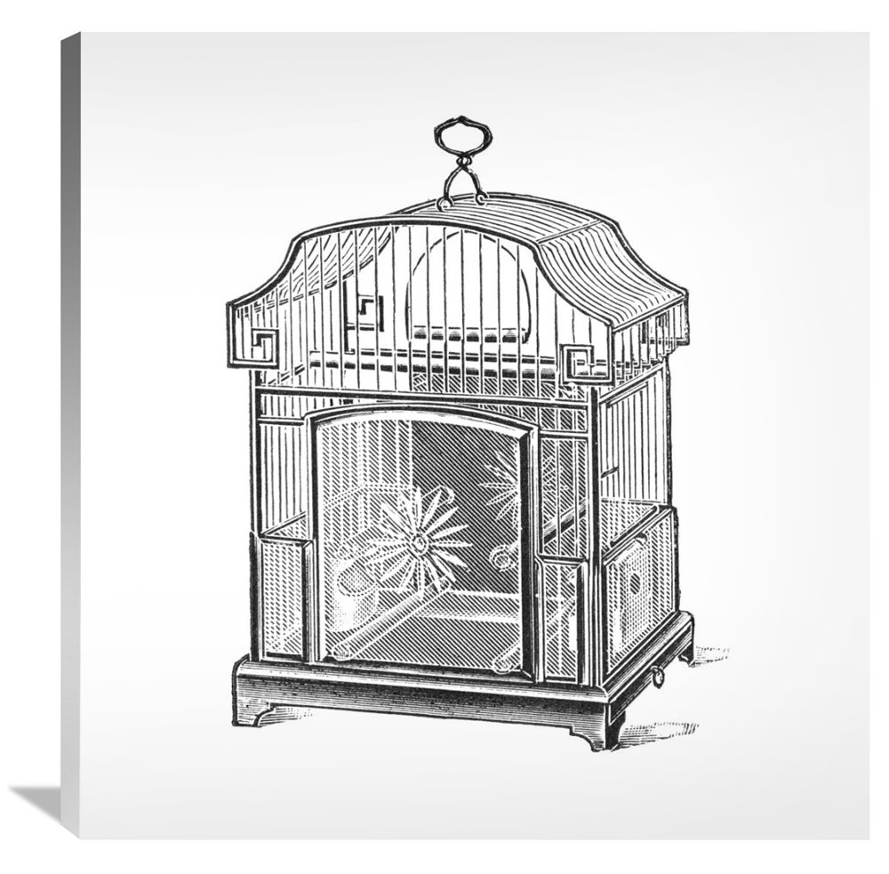Global Gallery Budget GCS-454828-3636-142 Catalog Illustration Etchings Gallery Wrap Giclee on Canvas Wall Art Print Birdcage-Gable Top Daisy Base