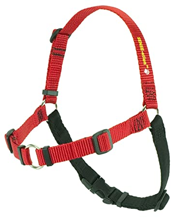 Amazon.com : SENSE-ation No-Pull Dog Harness - Red with Black Small