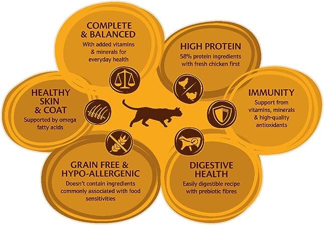 Wellness CORE - Pollo esterilizado para Gatos con turca, sin Granos Secos, 10 kg