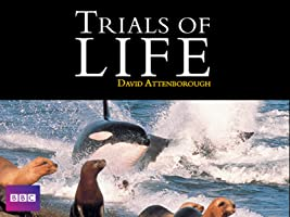 The Trials of Life Season 1