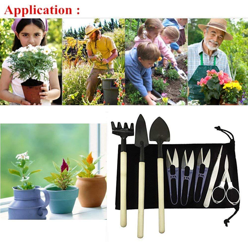 8 Pcs Bonsai Set Kit Garden Tool with Pruner,Fold Scissors,Mini Rake,Bud, Leaf Trimmer Set & Waterproof Fabric Bag