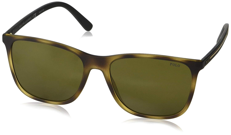 Amazon.com: Gafas de sol Polo PH 4143 518273 MATTE DARK ...