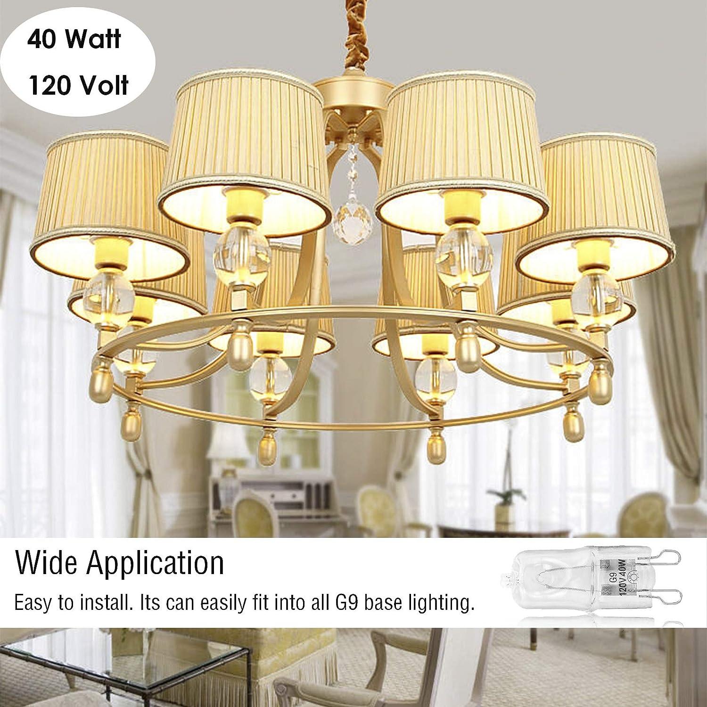 20 Packs G9 Halogen Light Bulbs Clear Glass T4 JD Type G9 Bulbs Dimmable Q40//G9//CL//120V 40 Watt Halogen Bulbs 2 Pin Warm White