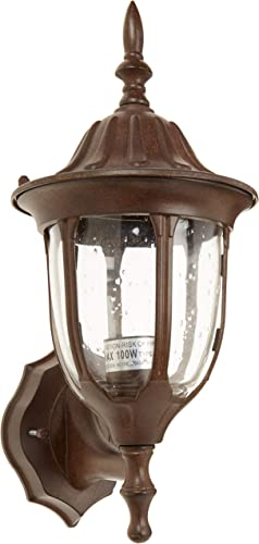 Acclaim 5060BW Suffolk Collection 1-Light Wall Mount Outdoor Fixture, Burled Walnut
