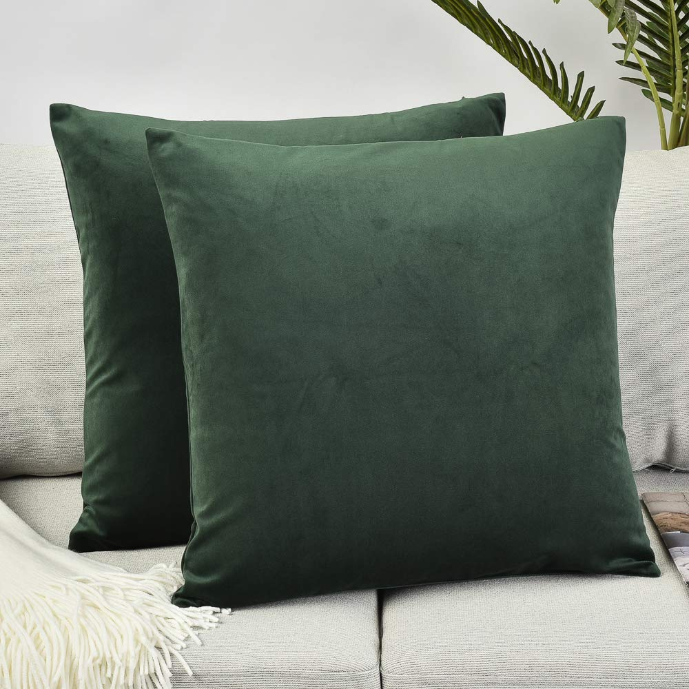 Phenomenal Rythome Set Of 2 Comfortable Throw Pillow Cover For Bedding Decorative Accent Cushion Sham Case For Couch Sofa Soft Solid Velvet With Zipper Hidden Ibusinesslaw Wood Chair Design Ideas Ibusinesslaworg