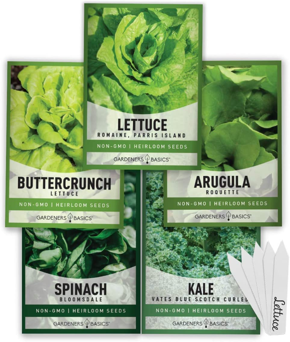 Lettuce Mixed Greens Gourmet Non GMO Heirloom Vegetable Seeds Sow No GMO\u00ae USA