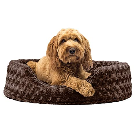 Amazon.com: Cama ovalada para perro o gato Furhaven, L ...