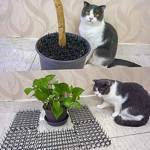 AYily 10 alfombrillas para gatos, felpudos con pinchos, felpudos ...