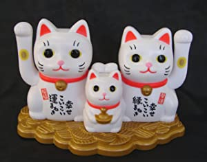 Feng Shui Import 5